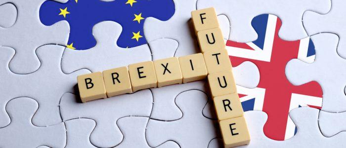 Brexit Future