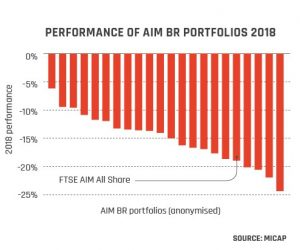 Performance of AIM BR Portfolios 2018 graph from page 18