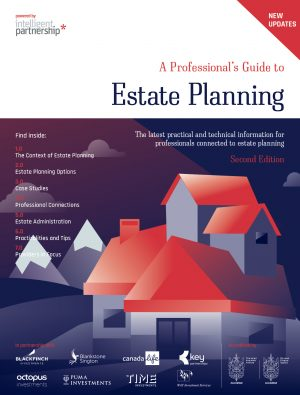 Professional's Guide to Estate Planning – Second Edition