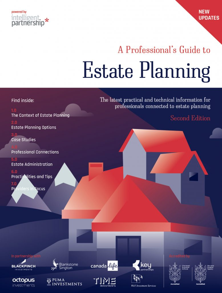 Professional's Guide to Estate Planning - Second Edition